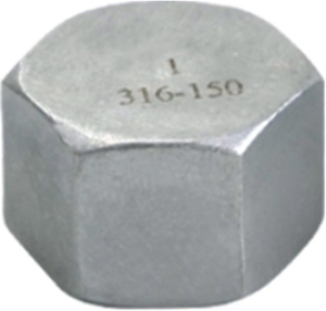 Picture of SS 316 CL150 Flanged FNPT Hex Cap #ANHC/6N