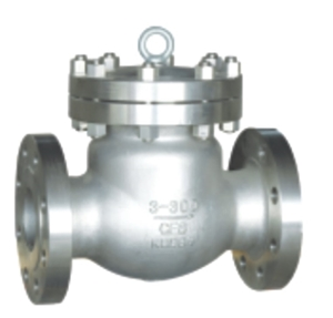 Picture of  SS CF8M Swing Check Valve CL 300 Trim 10 Flanged