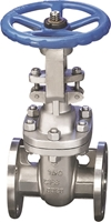 Picture of  Stainless Steel Flanged Gate Valve Trim 10 Class 300