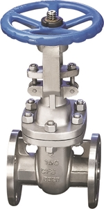 Picture of  SS CF8M Gate Valve Trim 10 Class 300 Flanged